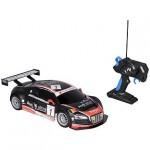 Masina cu telecomanda Nikko Audi R8 Rally Car
